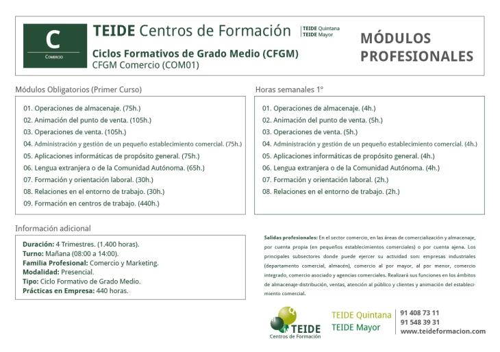 CFGM Comercio TEIDE