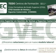 CFGS Gestión de Ventas y Espacios Comerciale-01