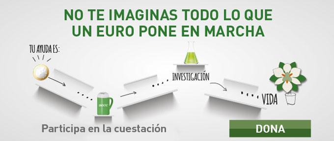 Cuestacion_2016